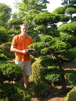Bonsai, Orient Trend Díszfaiskola